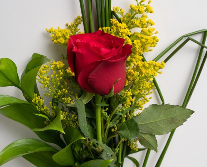 Rosa Solitária Vermelha