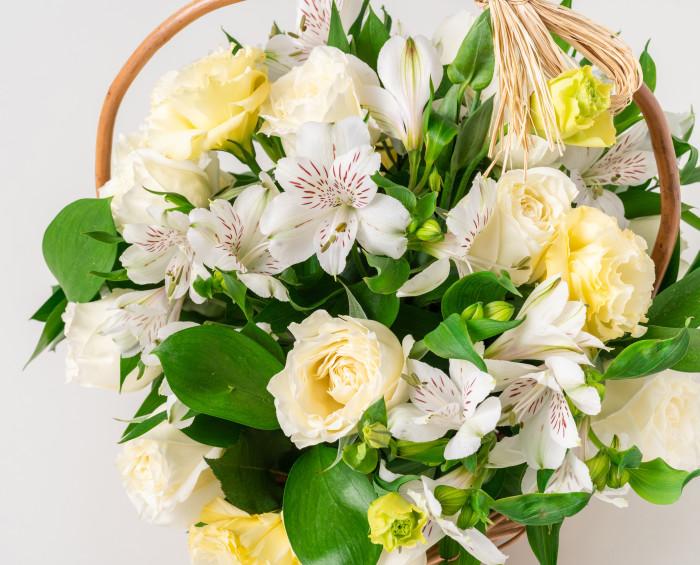 Cesta de Flores do Campo Brancas